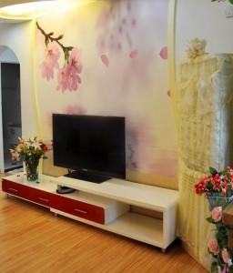 荔城区爱心婚房客厅墙绘